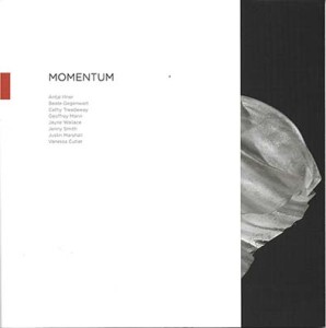 Momentum catalogue copy